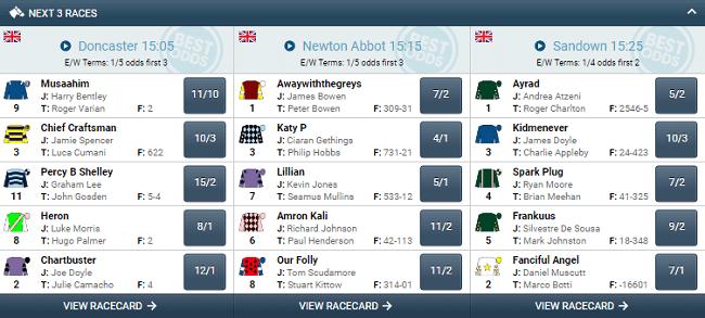 Sports Betting on UK Horses